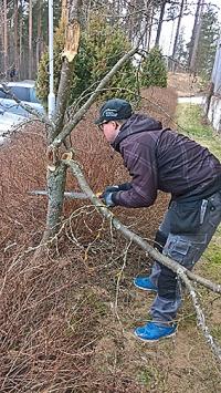 Työnseuraaja Jere Seppä tekee pihatöitä.