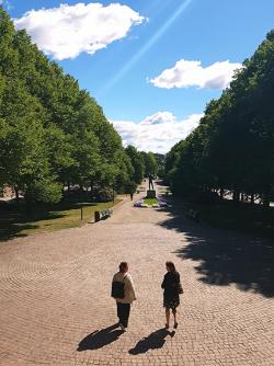 Puistokäytävä ja kaksi kävelijää