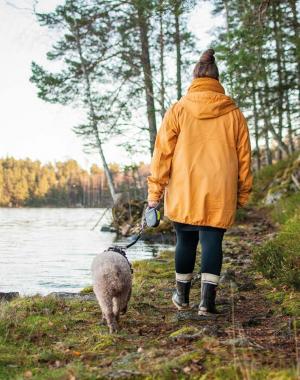 Suvi koiran kanssa järven rannalla kävelemässä poispäin kamerasta.