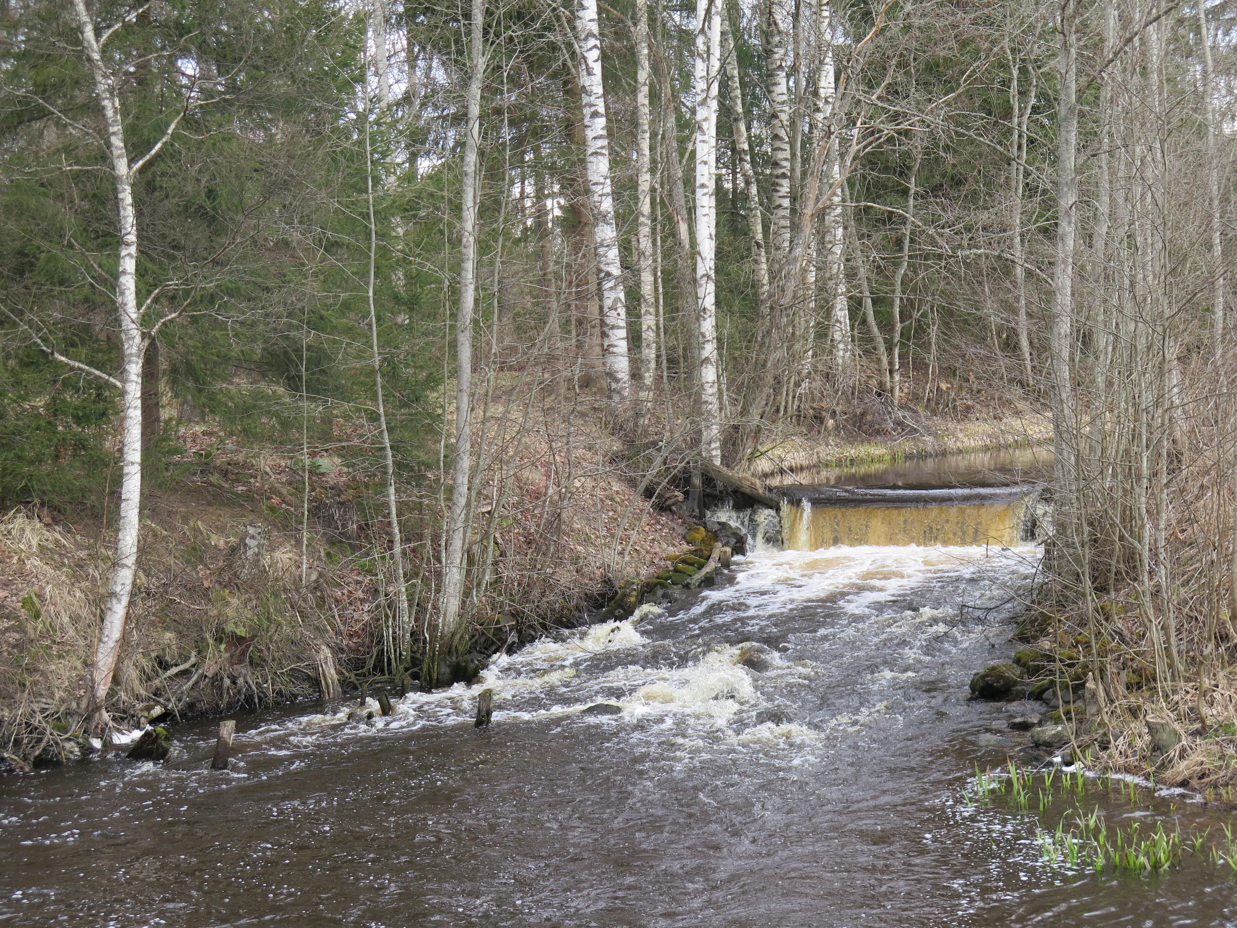 Virtaava, keväinen joki.